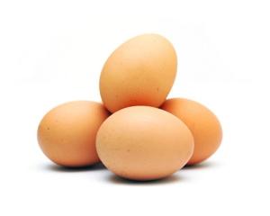fresh-organic-farm-eggs